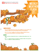 Weekly Weather Flash by FBIC Global Retail and  Technology Oct 6th