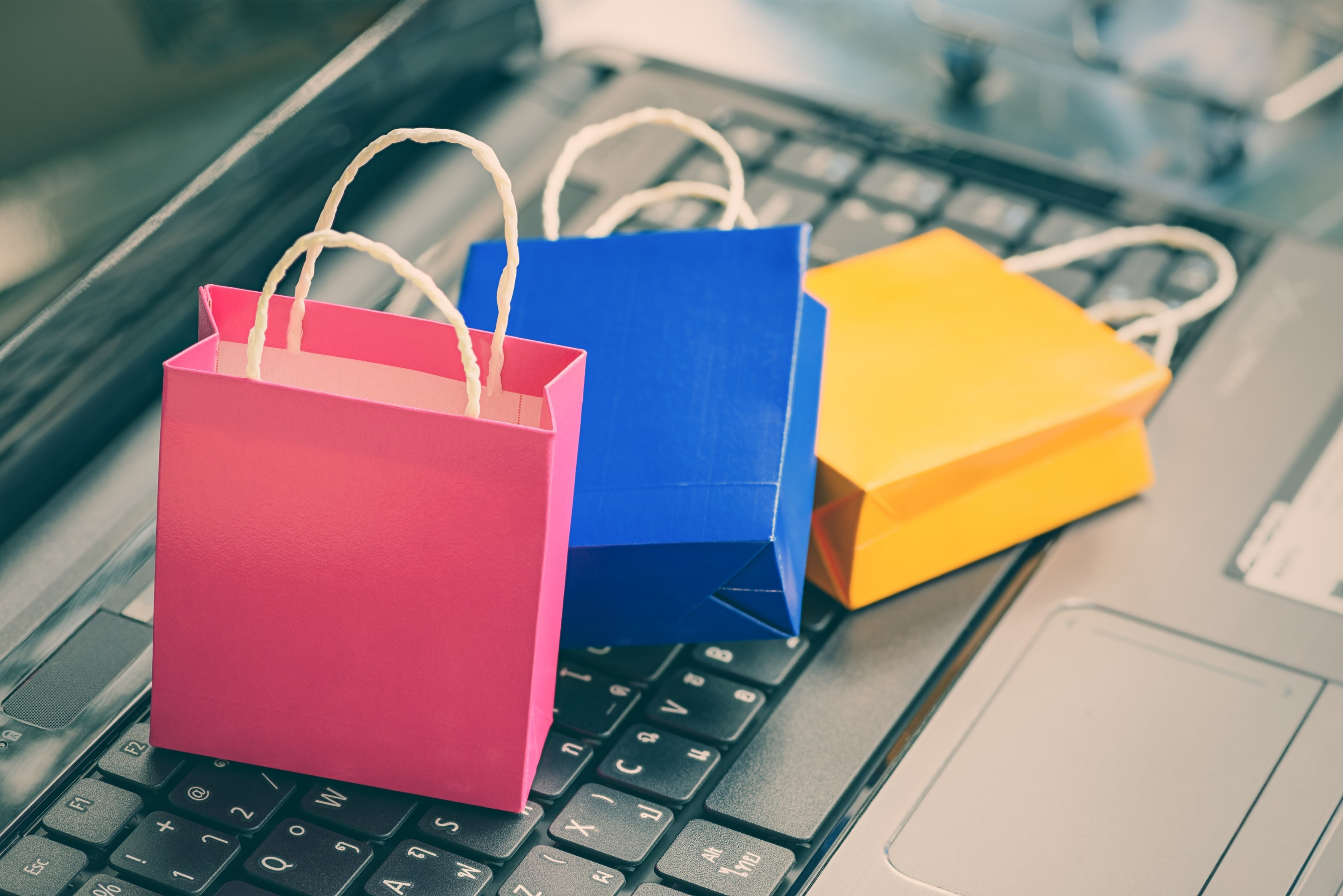 Online Shopping Bags